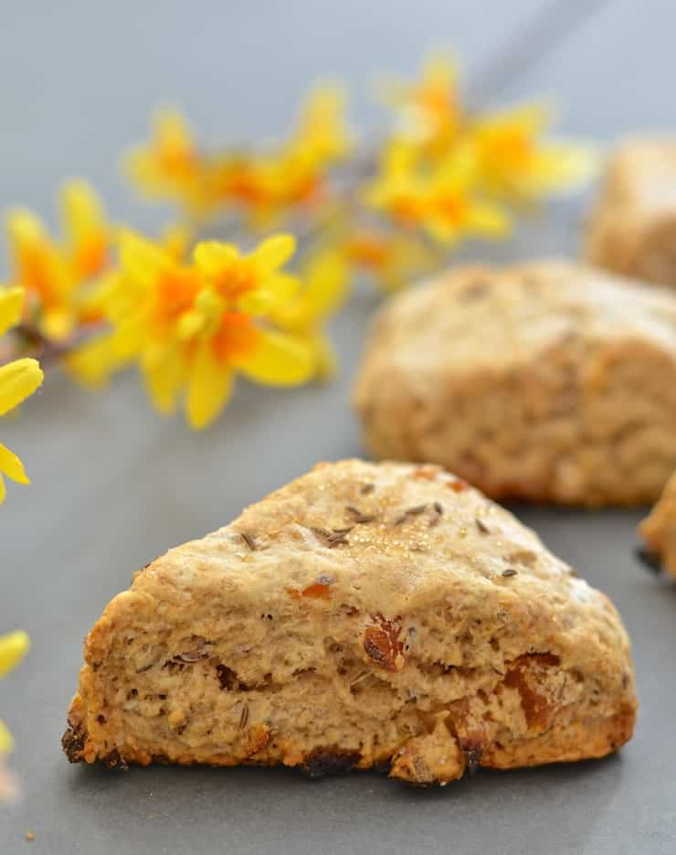 Apricot and caraway seeds might seem like a strange combination but I promise you they work beautifully together! With their crunchy exterior & dense, slightly crumbly but soft & tender interior, these Apricot Caraway Scones are utterly delicious!