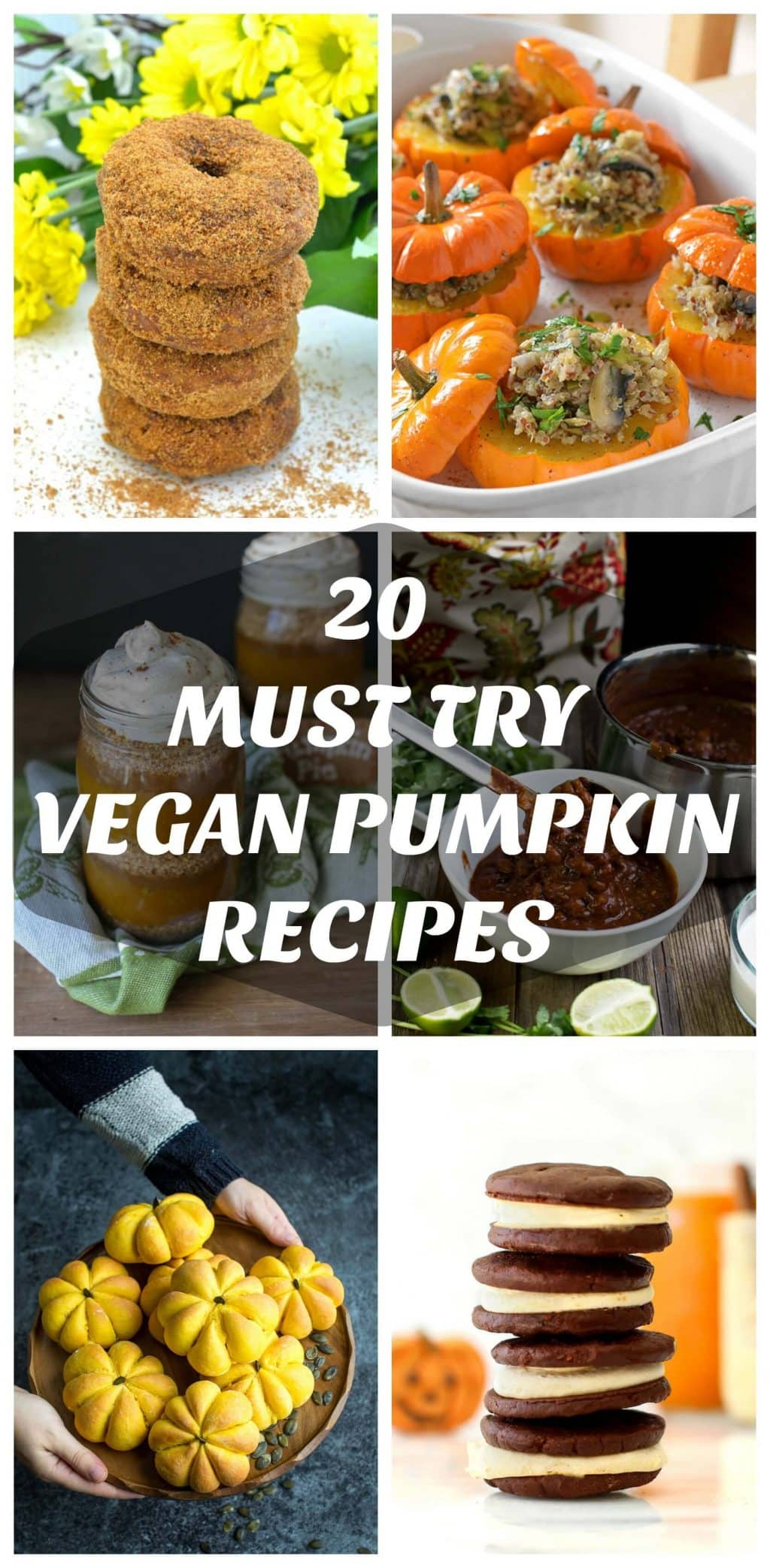 Take your pumpkin puree to a whole new level with these 2o Must Try Vegan Pumpkin Recipes! Whether you are a sweet or a savoury kind of person there is something here that will fit the bill.