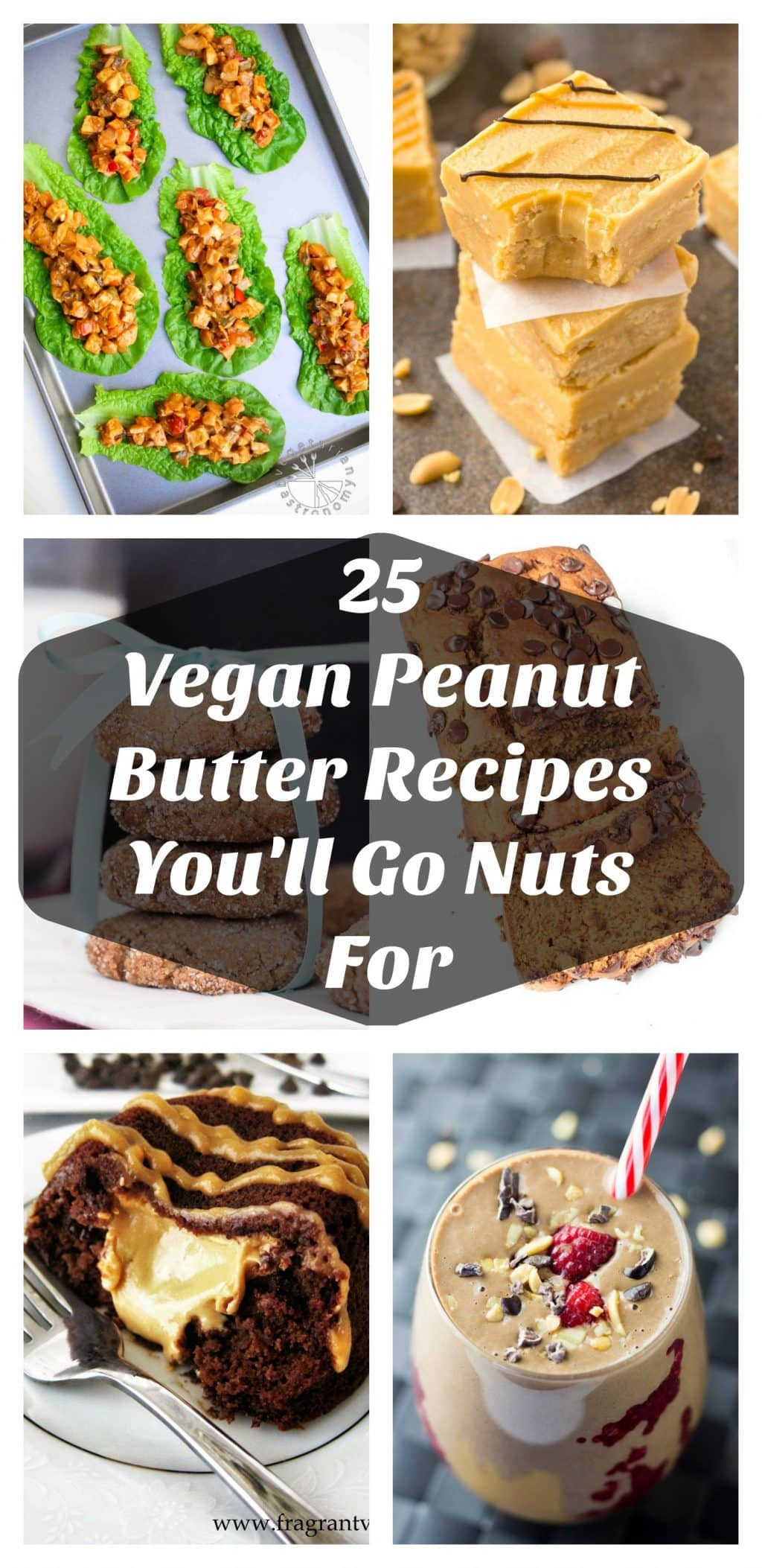 It's National Peanut Butter Month so go nuts and make some of these awesome vegan peanut butter recipes!