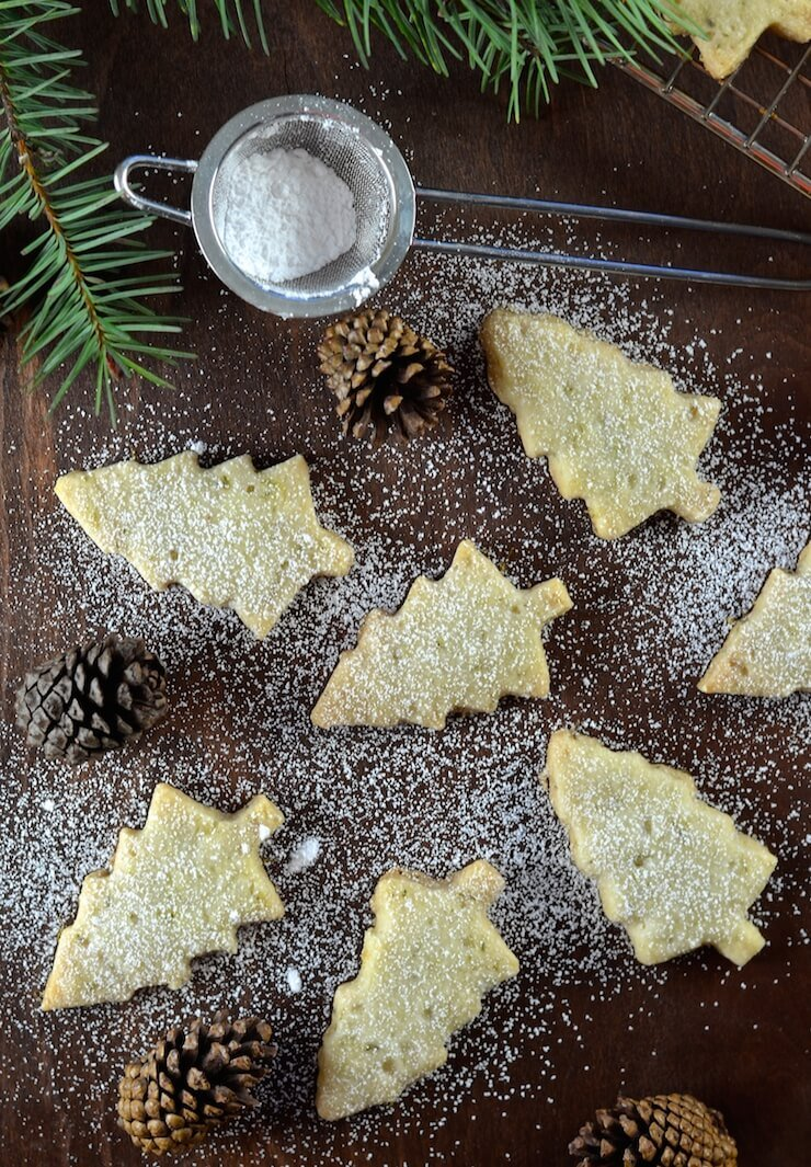 Melt in your mouth Pine Needle Shortbread Cookies. A twist on an old favourite with just a hint of piney, citrusy flavour. Delicate, delicious & sure to impress!