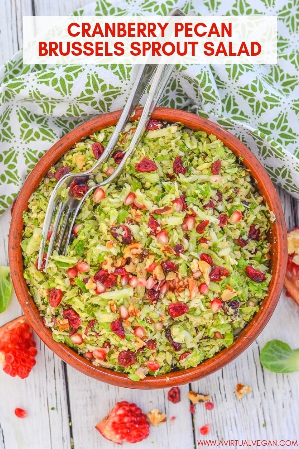 This citrus and cinnamon infused Cranberry Pecan Brussels Sprout Salad is fresh & absolutely packed with flavour & interesting textures. It's also hearty & warming thanks to the orange & cinnamon vinaigrette. Perfect for all of your fall & winter entertaining!  #salad #brusselssprouts #thanksgiving #vegan #christmas #christmasrecipe