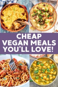 Need some cheap vegan meals that will help keep your wallet full and tastebuds happy? I've got you covered with this selection of budget friendly recipes you'll love!