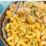 The ultimate Vegan Mac and Cheese! Cheesy, saucy macaroni topped with an irresistible buttery & golden crispy crumb topping, or omit the topping and making it on the stovetop. No dairy, no nuts & easily made gluten-free. Prepare to get saucy!