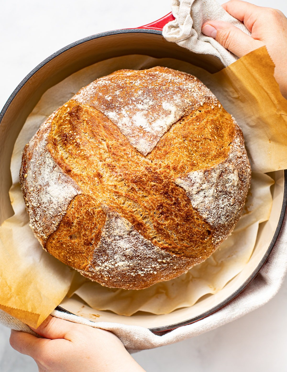 a loaf of crusty no knead sourdough bread in a red Dutch oven