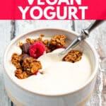 a bowl of vegan yogurt with granola and berries